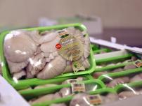 Μανιτάρια Κολινδρού | Ποιότητα